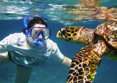 Snorkeling Koh Tao Island